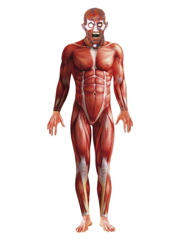 Anatomy Man Costume, Red