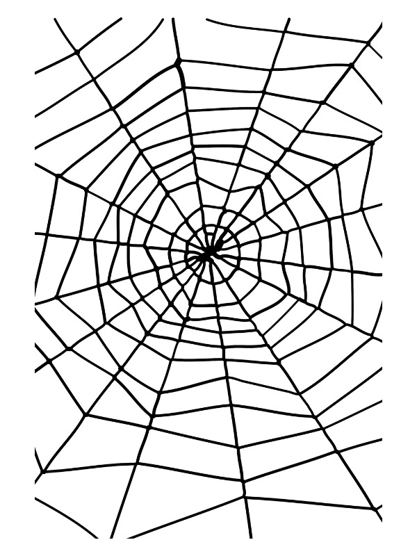 Spider & Spiders Web, Black