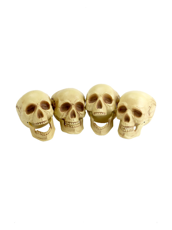 Skull Heads, Natural, 4 Pieces, 16cm Tall