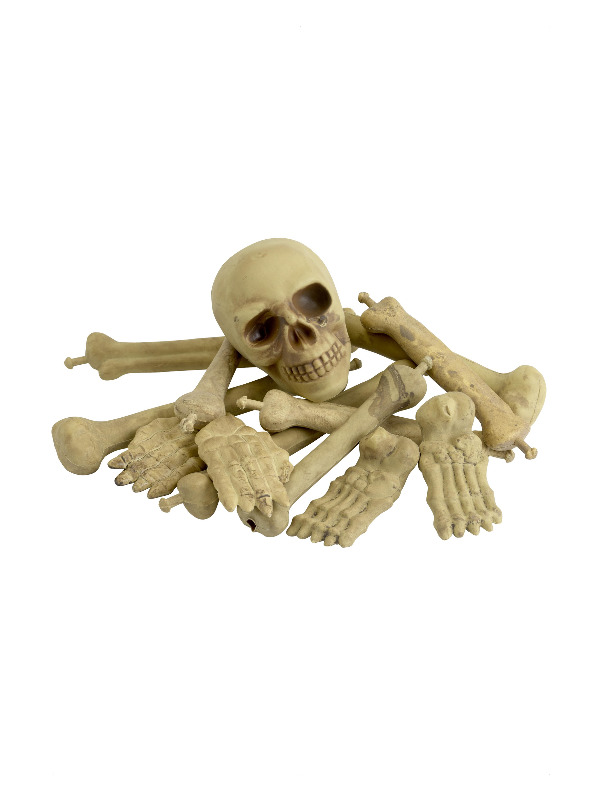 Bag of Bones & Skull, Natural